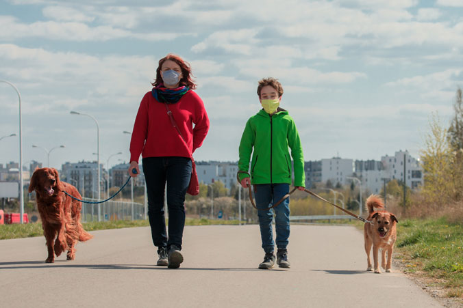 Photo of a woman and child walking two dogs